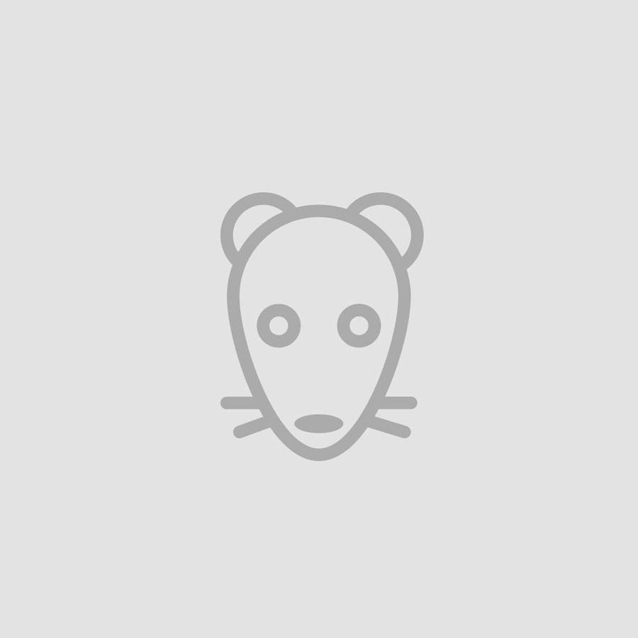 Oak grey nightstand, NO-03-EP